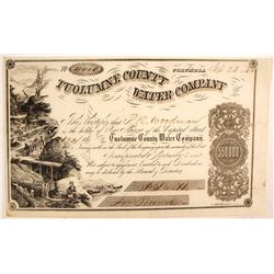 Tuolumne County Water Company Stock Certificate, 1862