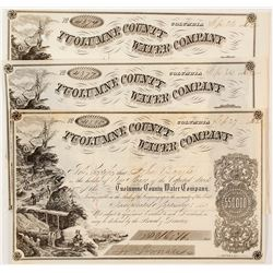 Tuolumne County Water Company Stock Certificate: Lot of Three