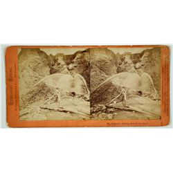 Hydraulic Mining - Behind the Pipes Stereoview by Thomas Houseworth