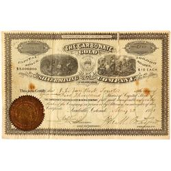 The Carbonate Gold & Silver Mining Co. Stock Certificate, Leadville, 1881