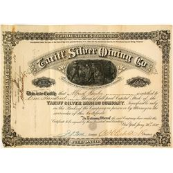 Tariff Silver Mining Company Stock Certificate, 1880