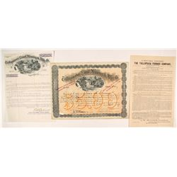 Tallapoosa Land, Mining & Mfg. Co. Stock Certificate with a Twist