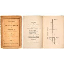 J.D. Whitney Report of Fulton & Other Copper Mines in Lake Superior Country, 1854