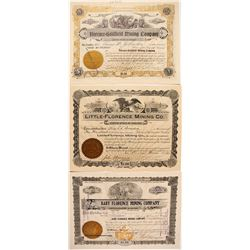 Florence Goldfield Stock Certificate and little Florence Stock Certificates