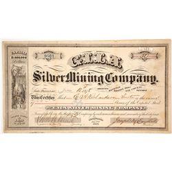 Gila Silver Mining Company Stock Certificate