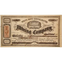 White Dove Cons. Mining Company Stock Certificate, Gold Hill, Nevada Territory, 1864