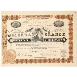 Sierra Grande Mining Company Stock Certificate, Lake Valley, NM 1883