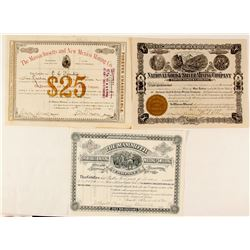 Three Different New Mexico Mining Stock Certificates, 1879-1920