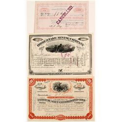 Dakota Territory Mining Certificates including JB Haggin Signature (3)