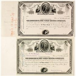 Sir Roderick Dhu Gold Mining Co. Proof Stock Certificate, c.1879  (Black Hills)