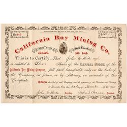 California Boy Mining Company Stock Certificate, Ophir District, Utah, 1875
