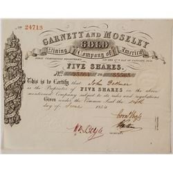 Garnett and Moseley Gold Mining Company Stock Certificate