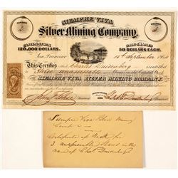 Siempre Viva Silver Mining Company Stock Certificate, Sinaloa, Mexico 1864, Charles Duisenberg