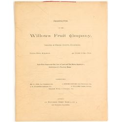 Prospectus for Willows Fruit Company, c.1891