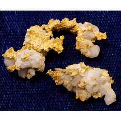 Royal Mine Gold Specimens
