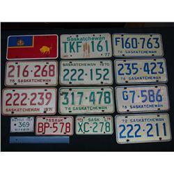 Lot of License Plates (14)(1970,71,72,74,75, 1976 Duplicate, Etc)