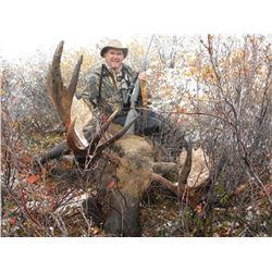 10-Day Alaska Moose Hunt
