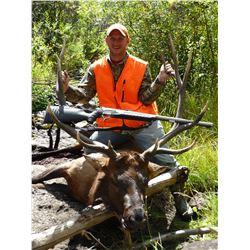 DIY Elk, Mule Deer & Black Bear hunt in Colorado