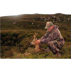 Balmoral Estate Roe Deer Hunt for 1 Hunter 7 Days with 3 days of hunting