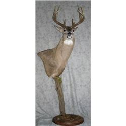 Pedestal Mount with Habitat for a Mule or Whitetail Deer from Nature's Own Wildlife Studios