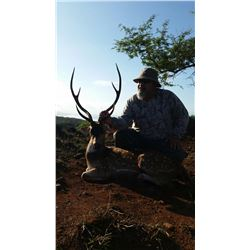 Axis Deer Hunt on Molokai