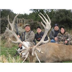 $3,000 credit on Red Stag hunt with South Pacific Safaris, NZ