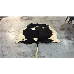 Tanned Black and White Bull Hide