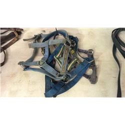 4 Heavy Duty Halters