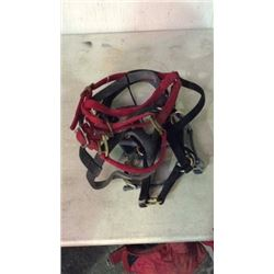 5 Yearling Halters Used