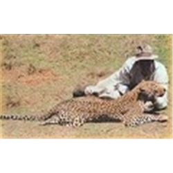 14 Day Zimbabwe Leopard Hunt