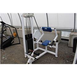 ATLANTIS BACK EXERCISE MACHINE