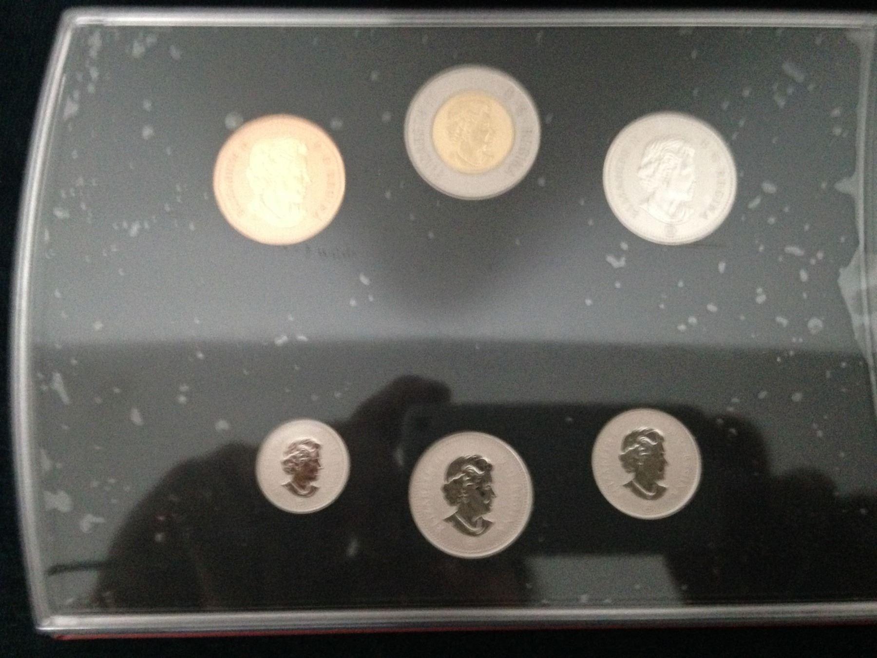 Black Bear $2 Coin 2013 Canada Specimen Set Young Wildlife