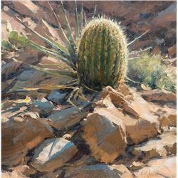 Matt Smith -Horse Mesa Barrel