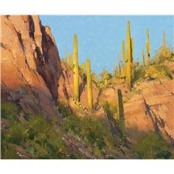 Matt Smith -Log Corral Canyon