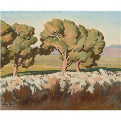 Maynard Dixon -Summer Cottonwoods