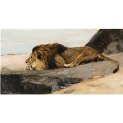 Wilhelm Kuhnert -Lion on the Lurk