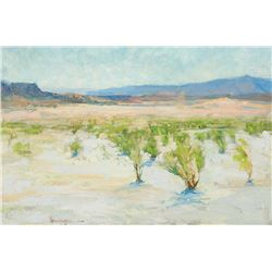 Richard Schmid -San Felipe Desert, New Mexico