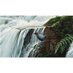 Robert Bateman -Dipper by the Waterfall