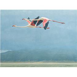 Robert Bateman -Flamingos in Ngorongoro