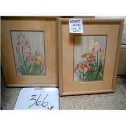 Iris Prints