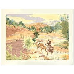 Oak Creek Canyon by Nelson, William