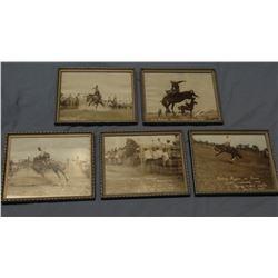 5 Vintage rodeo photo prints, framed, Range Riders Museum, Miles City, MT