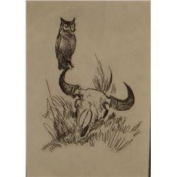"Powell, Ace, framed etching, Owl on buffalo skull, 61/100, 5""x 7"""