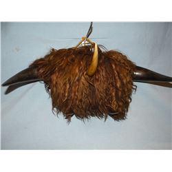 Bison horn hat rack