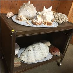 Sea Shell Collection with Rolling Cart