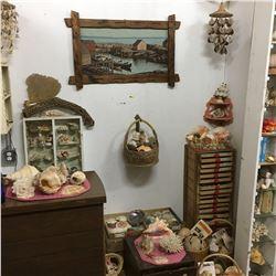 Beach House Room Display - MEGA Shell Collection