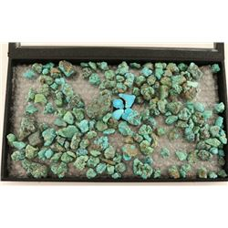 2 Pounds Sonoran Rough Turquoise