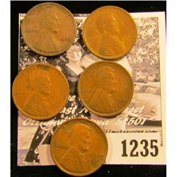 1235 . (5) 1909 VDB Wheat Pennies