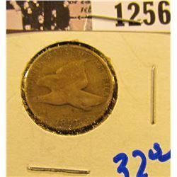 1256 . 1857 Flying Eagle Penny