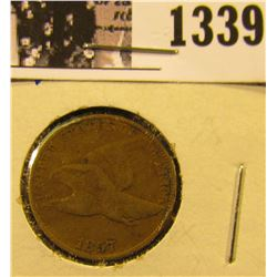 1339 . 1857 Flying Eagle Penny